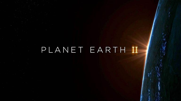BBC's Planet Earth II Series