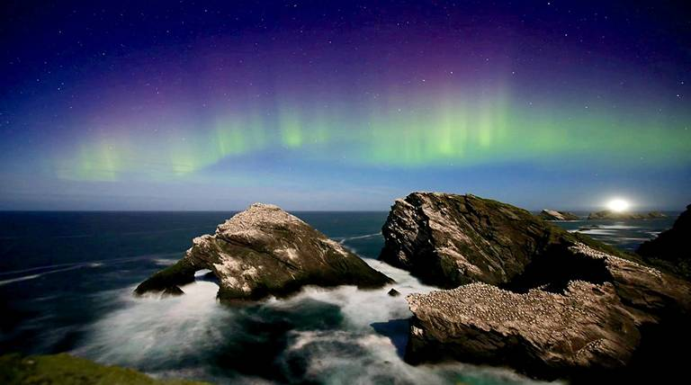 Shetlands Featured