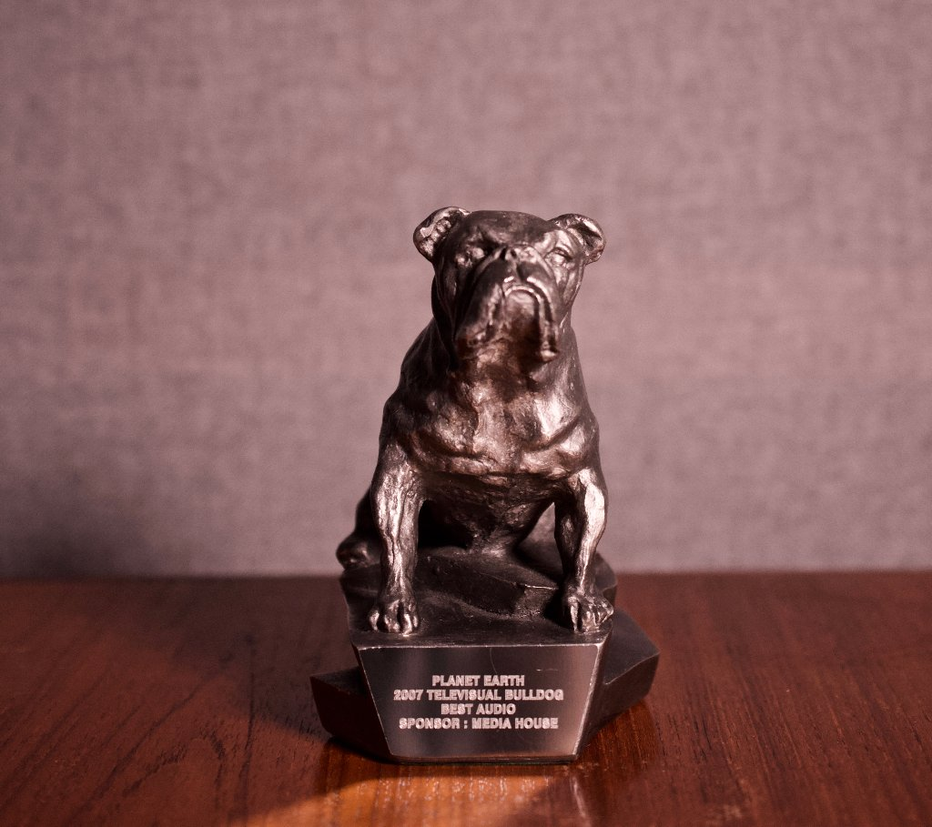 Televisual Bulldog Award